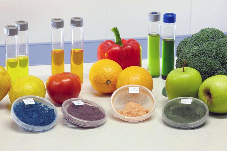Química de los Alimentos